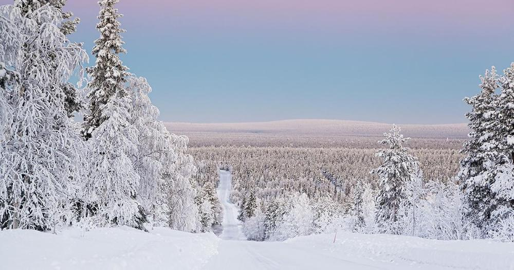 A wintery view from Lapland (Photo: Shutterstock)