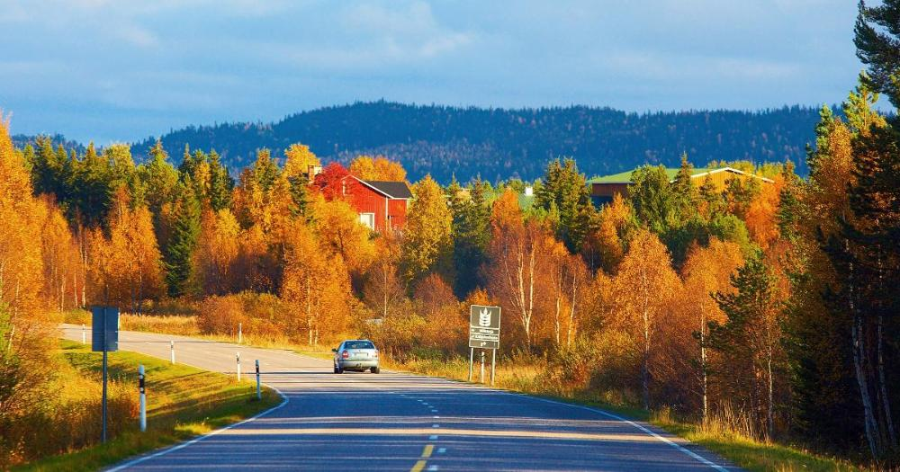 Road in Lapland (Photo: Shutterstock)